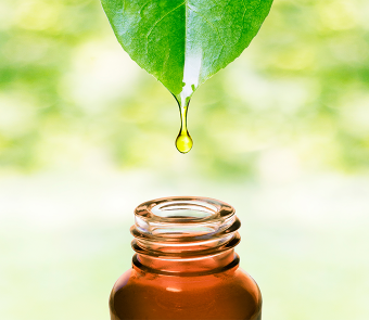Bien-être au naturel : phytothérapie, aromathérapie